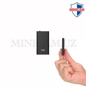 2. Самый маленький диктофон в мире, Модель 2021